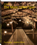 The Maze called Soul