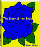 The Story of two Souls