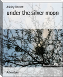 under the silver moon