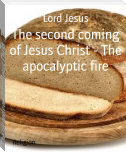 The second coming of Jesus Christ - The apocalyptic fire