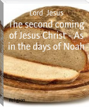 The second coming of Jesus Christ - As in the days of Noah
