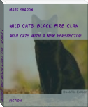 Wild Cats: Black Fire Clan    Book 1