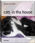 cats in tha house