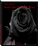 Soul Like A Black Rose