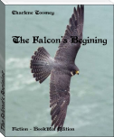 The Falcon's Begining