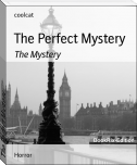 The Perfect Mystery
