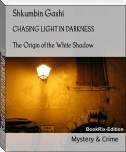 CHASING LIGHT IN DARKNESS