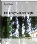 The Crazy Summer Night