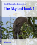 The Skylord book 1