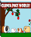 Guinea Pigs World!