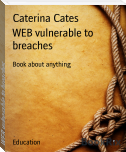 WEB vulnerable to breaches