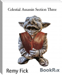 Celestial Assassin Section Three