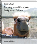 Samstagabend Facebook Party in der S-Bahn