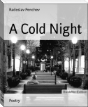 A Cold Night
