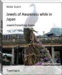 Jewels of Awareness while in Japan