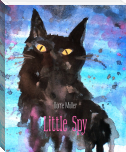 Little Spy