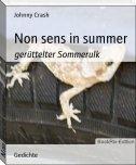 Non sens in summer