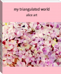 my triangulated world