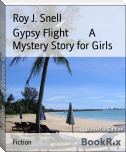 Gypsy Flight        A Mystery Story for Girls