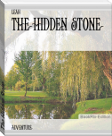 The Hidden Stone