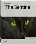 """The Sentinel"""