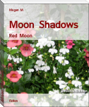 Moon Shadows