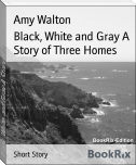 Black, White and Gray A Story of Three Homes
