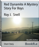 Red Dynamite A Mystery Story For Boys