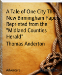 "A Tale of One City The New Birmingham Papers Reprinted from the ""Midland Counties Herald"""