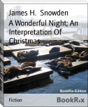 A Wonderful Night; An Interpretation Of Christmas