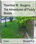 The Adventures of Paddy Beaver