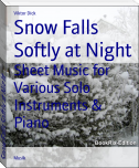 Snow Falls Softly at Night