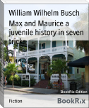 Max and Maurice a juvenile history in seven tricks