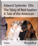 The Story of Red Feather A Tale of the American Frontier