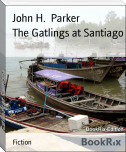 The Gatlings at Santiago