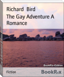 The Gay Adventure A Romance