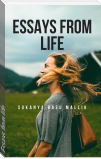 Essays from life