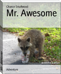 Mr. Awesome