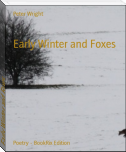 Early Winter and Foxes