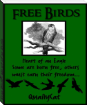 Free Birds - Heart of an Eagle