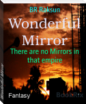 Wonderful Mirror