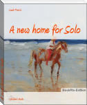 A new home for Solo