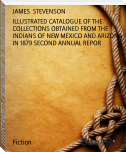 ILLUSTRATED CATALOGUE OF THE COLLECTIONS OBTAINED FROM THE INDIANS OF NEW MEXICO AND ARIZONA IN 1879 SECOND ANNUAL REPOR