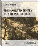 THE HAUNTED SENTRY BOX OF PORTO RICO