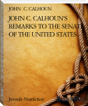 JOHN C. CALHOUN'S REMARKS TO THE SENATE OF THE UNITED STATES