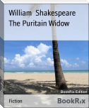 The Puritain Widow