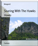 Soaring With The Hawks