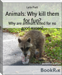 Animals: Why kill them for fun?