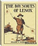 The Boy Scouts Of Lenox Or The Hike Over Big Bear Mountain