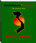 Black Dragon Red Sun